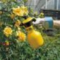 Garden Sprayers & Hoses