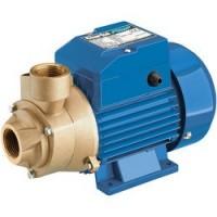 "CEB103 1"" 230V Centrifugal Brass Body Water Pump"