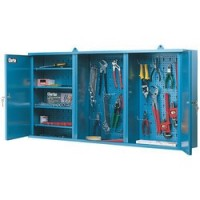 CWC50 Wall Cabinet With Two Lockable Doors
